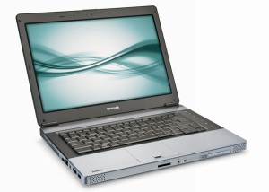 TOSHIBA Satellite E105-S1402 (Cooper Brown)